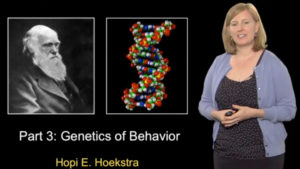 Part 2: Genetics of Morphology