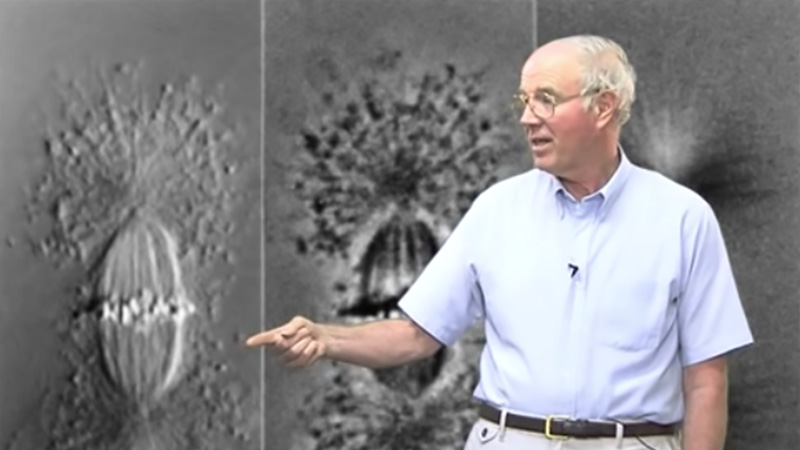Differential Interference Contrast (DIC) Microscopy Edward Salmon