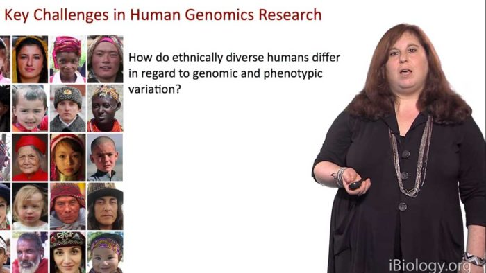 African Genomics: Human Evolution