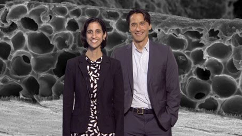 Advancing the Treatment of Retinal Diseases