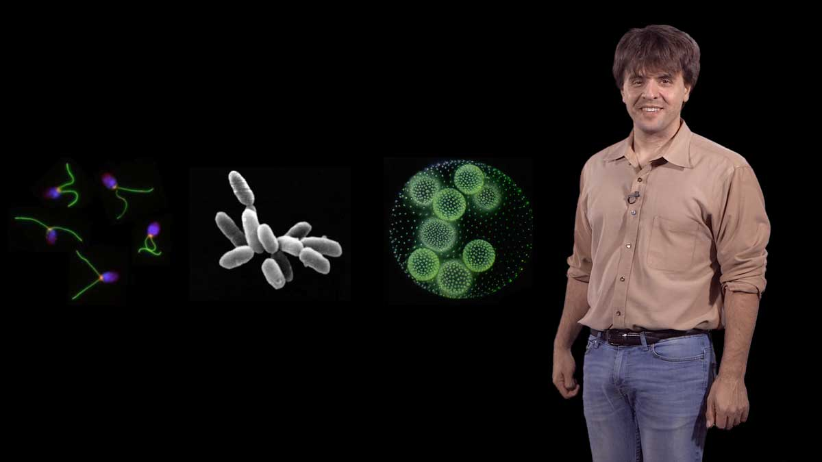Development of Optogenetics: Karl Deisseroth