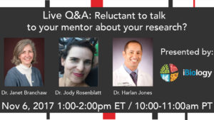 Live Q&A: Reluctant to talk to your mentor about your research?