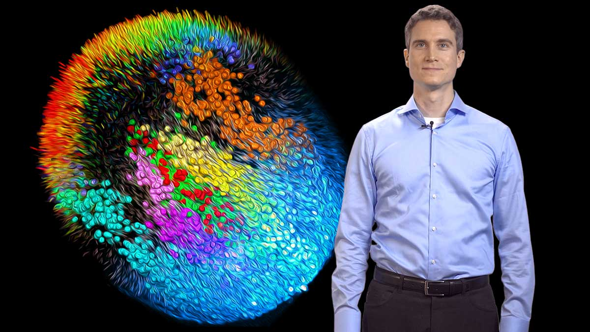 Single Cell Imaging : Philipp Keller